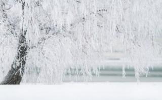 わたし、冬が怖いんです‼︎  冷え性の方は冬になり寒くなるのが恐怖に感じてる人が多い。