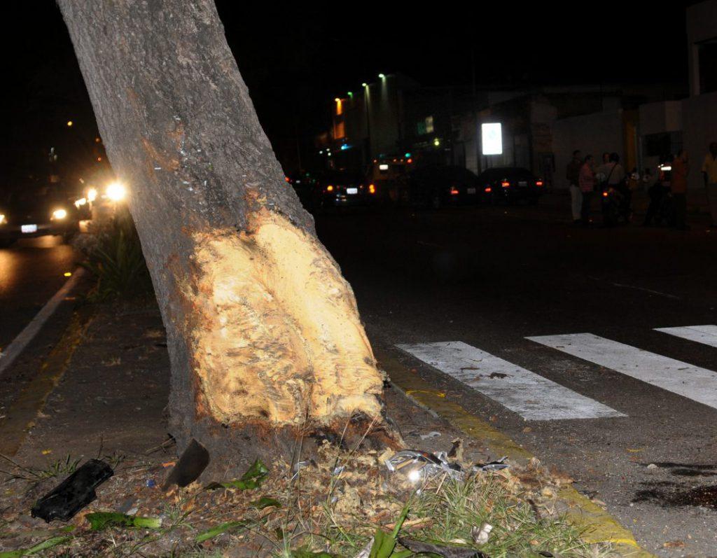 Árbol con el que impacto el carro del profesor Ricardo Maldonado. (Foto: Ángel Chacon)