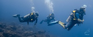 PADI courses in El Nido