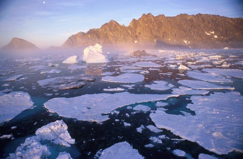 Les effets du réchauffement climatique