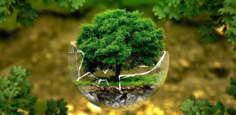 Comment responsabiliser une copropriété pour la rendre plus écologique?