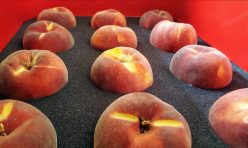 Two Dozen Peaches to ID, KS, ND, NV, OK, SD or TX