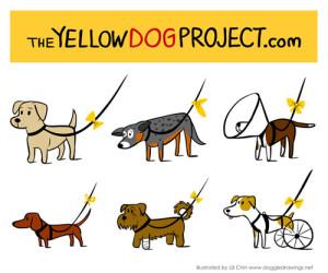 yellowdog.
