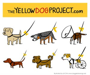 yellowdog.