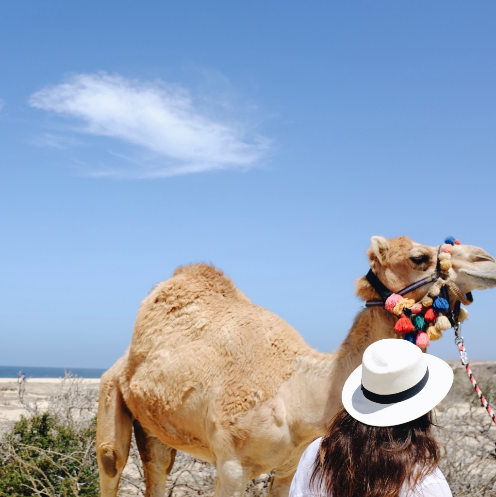 Riding camels in Cabo San Lucas, Mexico with Cabo Adventures - elanaloo.com