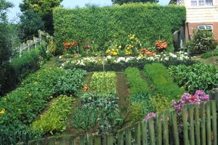 huerto - Plante un huerto. Simplifica tu vida 6