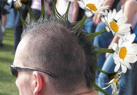 punky margaritas - Be flower, my friend. Humor ecológico