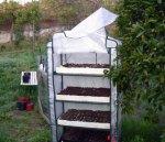 invernadero ii - La bitácora del huerto: el semillero