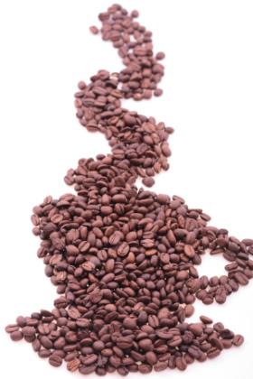 cafe - cafe