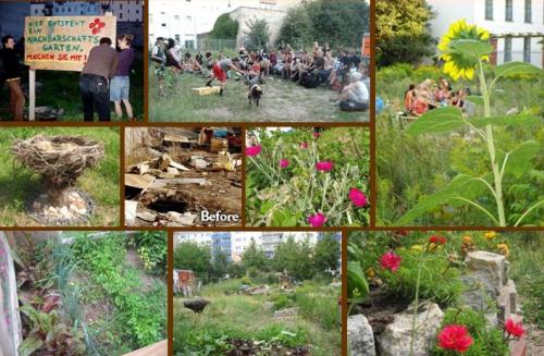 guerrilla gardening - guerrilla gardening