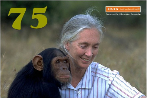 jane-goodball