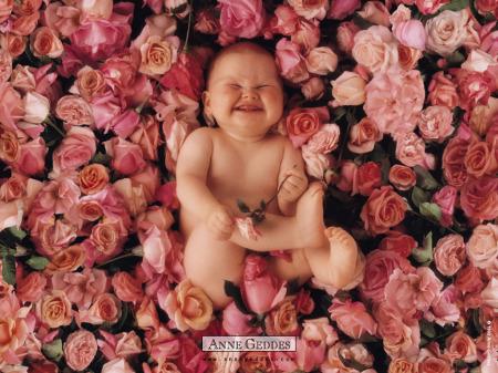 bebe rosas - bebe-rosas