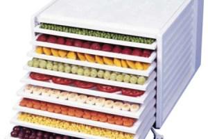 deshid - DESHIDRATADORAS: conservar los alimentos de forma sana y cómoda (1/2)
