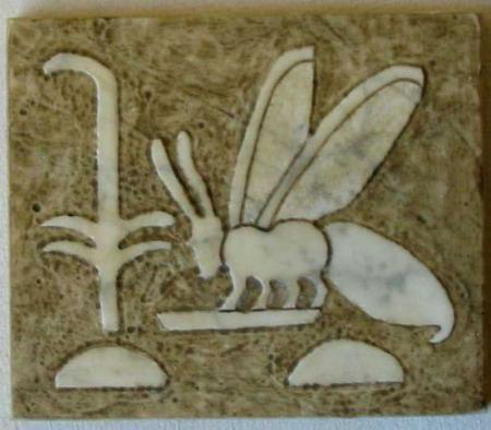 abeja41 - abeja