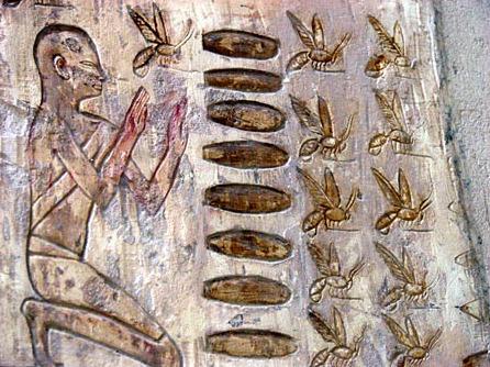 abeja5 - Especial Las Abejas (3/3): una visión histórica y esotérica