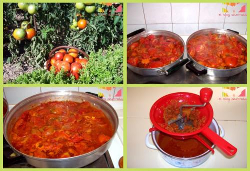 conserva tomate proceso 1 - conserva-tomate-frito casero