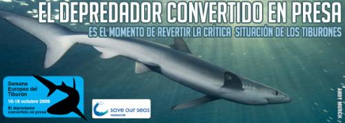 Semana Europea del Tiburon 2009