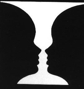 polaridad2 - polaridad