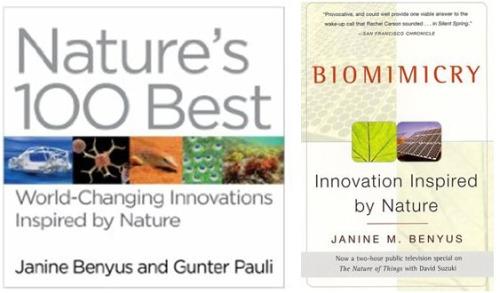 biomimesis2 - BIOMÍMESIS: el futuro está en la naturaleza