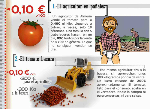 tomate 11 - Los tomates del campo a la mesa: un viaje demasiado caro