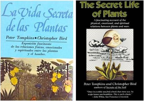 vida secreta - vida-secreta de las plantas