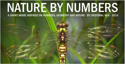 geometria naturaleza