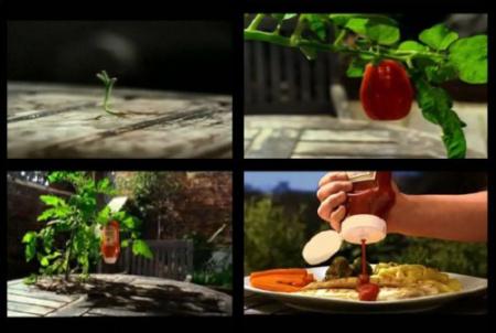 premio sombra 2010 tortilla de silicona - premio-sombra-2010-tortilla-de-silicona