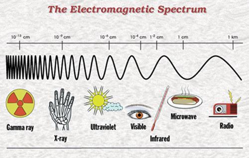 microondas - Los efectos del microondas en los alimentos y en la salud