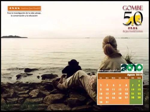 """Calendario IJGE agosto 2010 1024 - Calendario de agosto de Jane Goodall, boletín y entrevista: """"La Naturaleza es como una orquesta que pierde músicos"""""""