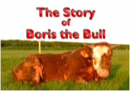 toro1 - Los toros también lloran