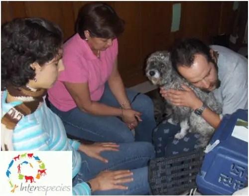 animales3 - curso de telepatía con animales interespecies