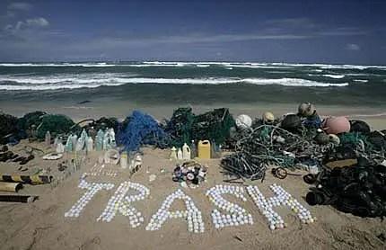 trash -  Ecobioball: pelota de golf ecológica con comida para peces