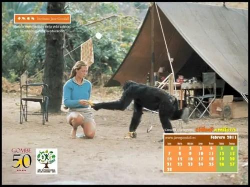 Calendario IJGE feb2011 1024b - Calendario IJGE feb2011 1024