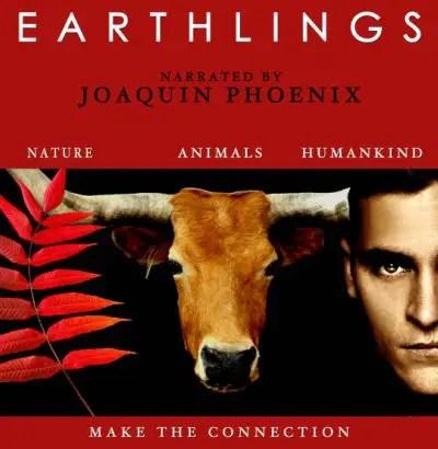 earthlings1 - El significado profundo de las tradiciones con animales: zorros, toros, delfines y más