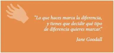 jane2 - jane goodall