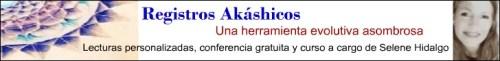 Selene nivel II - Empresas que han confiado en El Blog Alternativo en Junio 2011