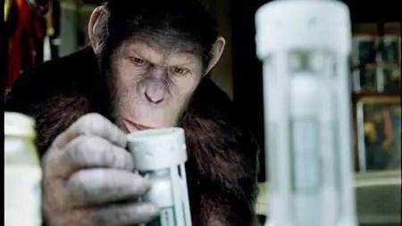 el origen del planeta de los simios trailer espanol - el-origen-del-planeta-de-los-simios-trailer-espanol