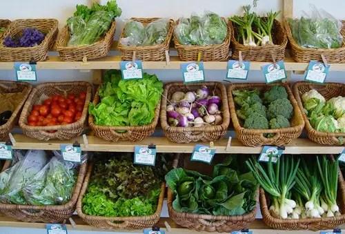 falsos inconvenientes de consumir alimentos ecologicos
