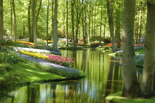 jardin1 - jardin