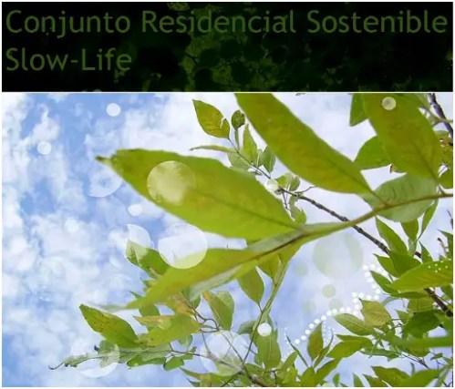 slow life - slow life