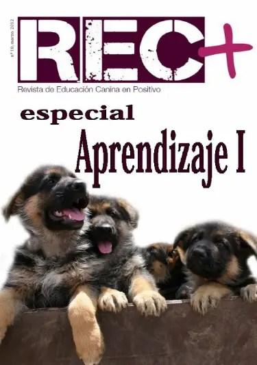rec 10 - rec 10