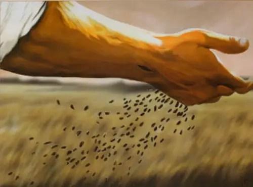 """elsembrador - Por fin llegó la cosecha: """"se recoge lo que se siembra"""""""