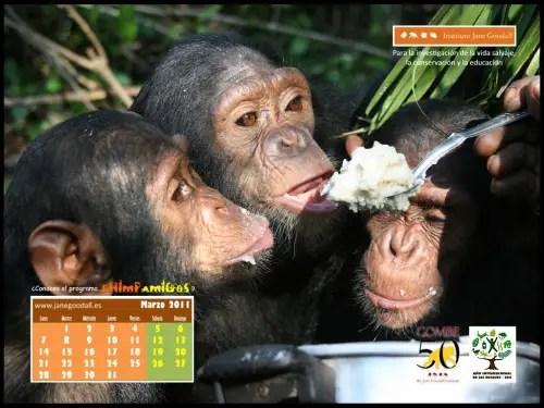 Calendario IJGE mar2011 10242 - Calendario IJGE mar2011 1024(2)