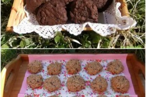 Collage de Picnik7 - Galletoterapia o como las cookies alegran la vida