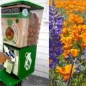 Greenaid split spread b.full  - Máquinas expendedoras de bombas de semillas para hacer ciudades más verdes