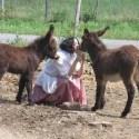 Laila del Monte animales - Comunicarse con los Animales: entrevista a Laila del Monte