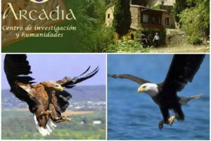 PicMonkey Collage2 - Viaje al interior 2012: retiro de 10 días de silencio, meditación y transformación personal en un espectacular paraje natural en la provincia de Gerona