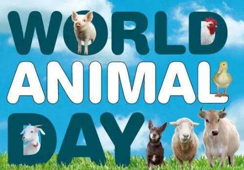 World Animal Day1 - Día Mundial de los Animales 2012