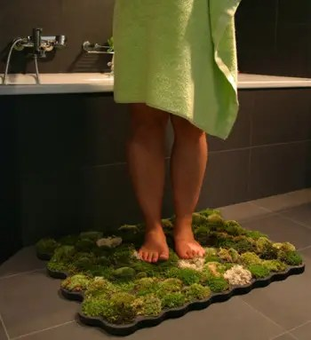 alfombra1 - alfombra de musgo