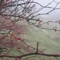 alma y lluvia - Vida Sencilla: la web que te acerca a la belleza de lo simple
